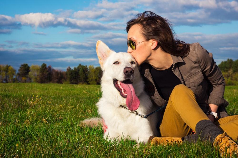 coaching-de-votre-entreprise-en-éducation-canine