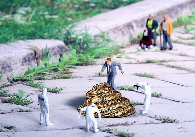 inspection-crotte-chien
