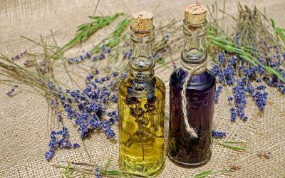 Quelles huiles essentielles pour votre chien ?