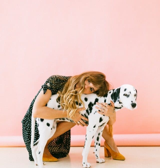 L'ostéopathie pour les chiens!