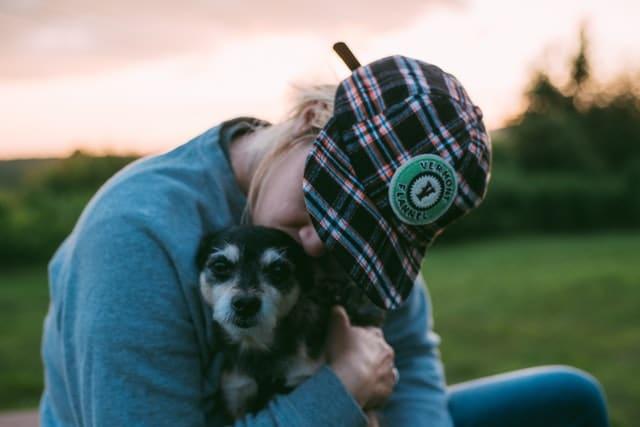 que faire avec un ostéopathe canin