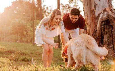 Pourquoi faire appel à un comportementaliste canin ?