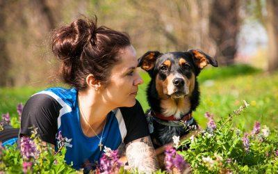 Comment trouver un bon comportementaliste canin ? 10 conseils pour trouver un comportementaliste canin professionnel et compétent.