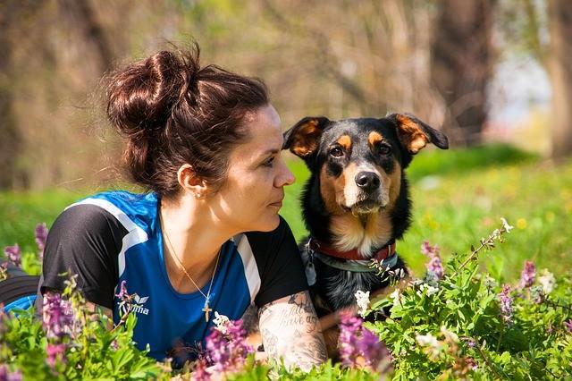 trouver un comportementaliste canin