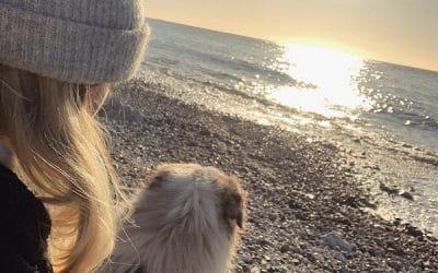 Où promener son chien au Havre ?