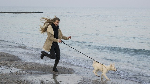 femme qui promène son chien sur la plage