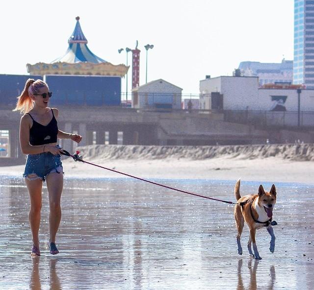 Femme qui se promène avec son chien sur la plage