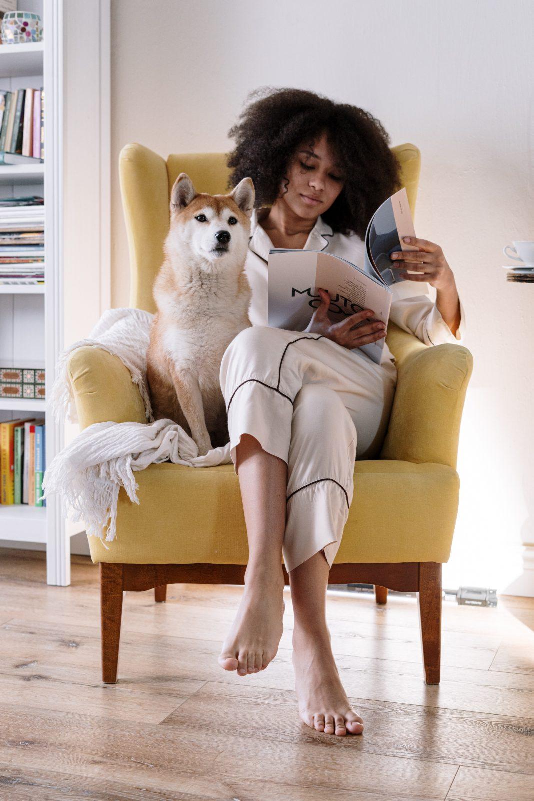 shiba inu sur le canapé avec sa maitresse